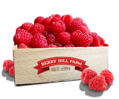 A box of Raspberries from Berry Hill Farm